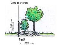 distance-de-plantation-lége