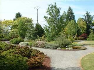 Les plantes couvre sol - Plante couvre sol qui pousse vite ...