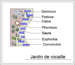 - Kit de massif : Jardin de rocaille - 15 plants - Massifs
