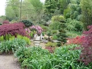 Terre de bruy re pour votre jardin pepini re en ligne 4 - Terre de bruyere ...